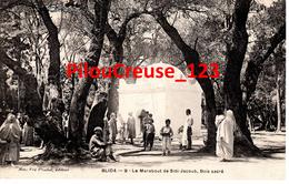 """Algérie - BLIDA - """" Le Marabout De Sidi Jacoub, Bois Sacré """" - Blida"""