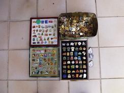 Lot De 500 Pin's Environ  Sans Les Attaches Et Sans Les Cadres - Badges