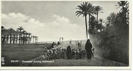Egypt Shepherd Driving Homeward - Egypte
