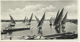 Cairo Le Caire River Nile - Le Caire