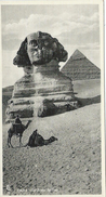 Cairo Le Caire The Great Sphinx - Le Caire