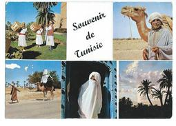 Souvenir De Tunisie - Tunisie