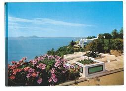 Sidi Bou Said Vue Panoramique - Tunisie
