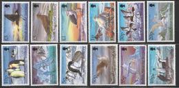 2005 British Antarctic Territory Birds Definitive Series Penguins Skua Petrel Complete Set Of 12 MNH - Unused Stamps