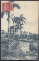 POS-860 CUBA POSTCARD. 1914. MARIANAO. PAISAJE CUBANO. COUNTRY LANDSCAPE. - Cuba