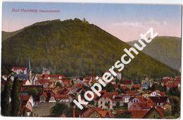Bad Harzburg  1929  (z4087) - Bad Harzburg