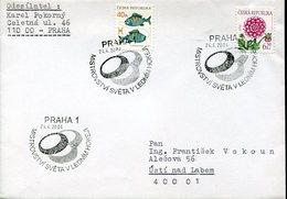 21657  Ceska Rep. Special Postmark 2004 Praha,    , Eis Hockey,  Hockey On Ice
