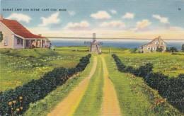 Massachusetts Cape Cod Quaint Scene - Cape Cod