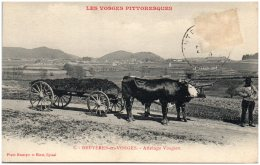 88 BRUYERES-en-VOSGES - Attelage Vosgien   (Recto/Verso) - Other Municipalities