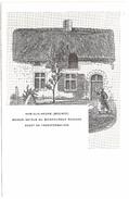 Ham-sur-Heure (Beignée) - Maison Natale Du Bienheureux Richard Avant Sa Transformation - Dos Non Divisé - Ham-sur-Heure-Nalinnes