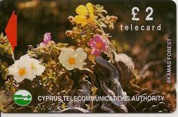 CARTE-MAGNETIQUE-CHYPRE-2£-FLEURS Des BOIS-TBE - Fleurs