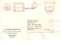 3900 HILLEGOM Hollande Pays Bas Flamme Empreinte Machine Illustrée Tulipe Fleurs Globe Carte Postale Imprimé 21 2 1955 - Planten