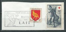 Flamme Sur Fragment 76 ROUEN GARE 1956 Pour Votre Santé Buvez Du Lait - Marcophilie (Timbres Détachés)