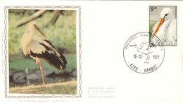 1654 Oiseau De La Réserve Naturelle Du Zwin (Knokke) - Cigogne Blanche