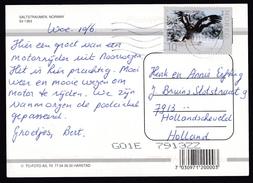 Norway: PPC Picture Postcard To Netherlands, 2009, 1 Stamp, Bird, Eagle, Predator, Card: Saltstraumen (traces Of Use) - Norwegen