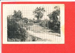 NORD VIETNAM Cpa Animée Chemin De Village - Viêt-Nam