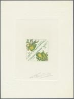 Thematik: Flora-Obst + Früchte / Flora-fruits: 1962, Gabon. Set Of 6 Multicolored Epreuves D'artiste Signée