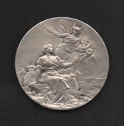 Médaille En Bronze Façon Argent : FOIRE EXPOSITION D'ÉPINAL .1924. Graveur E. Télier . - Professionals / Firms