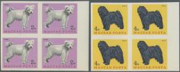 Ungarn: 1967, Hunde, GESCHNITTENE Postfrische Viererblocks, Kompletter Satz Von 7 Werten, M€380,-.