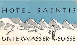 """D5882 """"HOTEL SAENTIS- UNTERWASSER - SUISSE"""" ETICHETTA ORIGINALE - ORIGINAL LABEL - Adesivi Di Alberghi"""