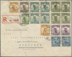 """China: 1923, Junk 1/2 C., 1 C. (4, Pair On Reverse), 2 C., 3 C. (block-4), 4 C. (block-4) And Reaper 15 C. (pair) Tied """""""