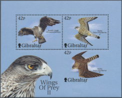 Thematik: Tiere-Greifvögel / Animals-birds Of Prey: 2000, Gibraltar, Birds Of Prey, Souvenir Sheet With Missing Per - Eagles & Birds Of Prey