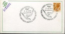 21670 Italia, Special Postmark 1975 Viareggio Roller Hockey, Rink Hockey