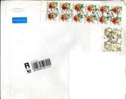 Custom Czech Republic In Moscow Registration Sticker.  Flowers: Lily.  Johannes Marcus Marci - Czech Republic