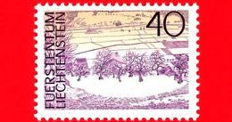 Nuovo - MNH - LIECHTENSTEIN - 1973 - Paesaggi - Landscapes - Rennhof, Mauren - 40