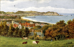 SALMON ART - A R QUINTON 2972 - THE BAY FROM OLD COLWYN - Quinton, AR