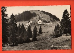EAA-27 Tête-de-Ran Et Hotel,  Hauts-Geneveys. Circulé En 1951 - NE Neuenburg