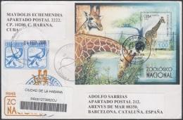 2007-FDC-95 CUBA 2007 FDC REG. COVER TO SPAIN. ZOOLOGICO ZOO JIRAFA . GIRAFFE. - FDC
