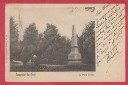 Souvenir De Fayt - Le Parc Public - 1901 ( Voir Verso ) - Manage