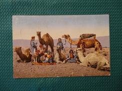 Halte De Chameliers - A Camel Driver / Beirut (67) - Cartoline