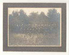 Garde Civique - Photo Sur Carton - Armée Belge - Bon état ( B205) - Guerre, Militaire