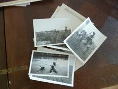Lot 23 Photos Originales Certaines Annotées Camargue Provence Taureaux Style George Saint Laurent D'Aigouze Ferrade 1931