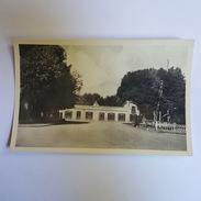 Batna - Avenue De La Gare - Carte En Superbe état - Batna