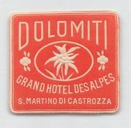"""D5900 """"GRAND HOTEL DES ALPES  - SAN MARTINO DI CASTROZZA - DOLOMITI -  ITALIA""""  ETICHETTA ORIGINALE - ORIGINAL LABEL - Hotel Labels"""