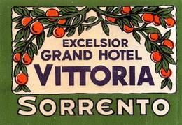"D5902 ""EXELSIOR GRAND HOTEL VITTORIA - SORRENTO -  ITALIA""  ETICHETTA ORIGINALE - ORIGINAL LABEL - Adesivi Di Alberghi"