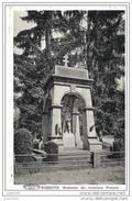 ROSSIGNOL ..-- TINTIGNY ..-- Monument Des Coloniaux Français 14-18 . - Tintigny