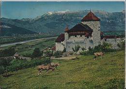 Schloss Castle Chateau Vaduz, Rheintal, Rhine Valley, Vallee Du Rhin - Photo: Baron V. Falz-Fein - Liechtenstein