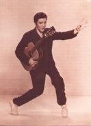 Elvis Presley - Chanteurs & Musiciens
