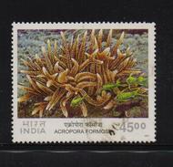 India 2001, Coral, Sealife, Minr 1845, Vfu. Cv 2,70 Euro