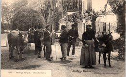 FOLKLORE  -- AU PAYS BASQUE -- Attelage Basque - Blanchisseuse N° 227 - Folklore