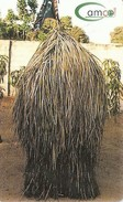*GAMBIA* - Scheda Usata - Gambia
