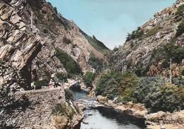 64----CAMBO LES BAINS--vallée De La Nive Au Pas De Roland---voir 2 Scans - Cambo-les-Bains