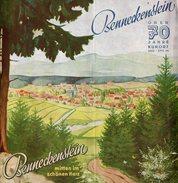 Prospectus Allemand Sur Benneckenstein, Ville Allemande De Saxe-Anhalt Située Dans Le District De Harz 1974 - Programas