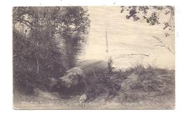 ZIMBABWE - VICTORIA FALLS, Hippo Siesta, Postally RETURNED, 1925 - Zimbabwe