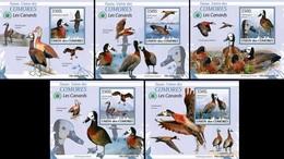 Comoros Comores 2009 Fauna Birds Duck 5 Lux Blocks MNH