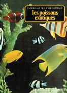 PANORAMA DE LA VIE ANIMALE . LES POISSONS EXOTIQUES . Editions De L' AGORA - Encyclopédies